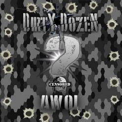 Dirty Dozen - AWOL