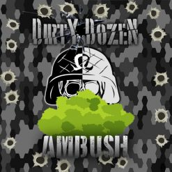 Dirty Dozen - Ambush